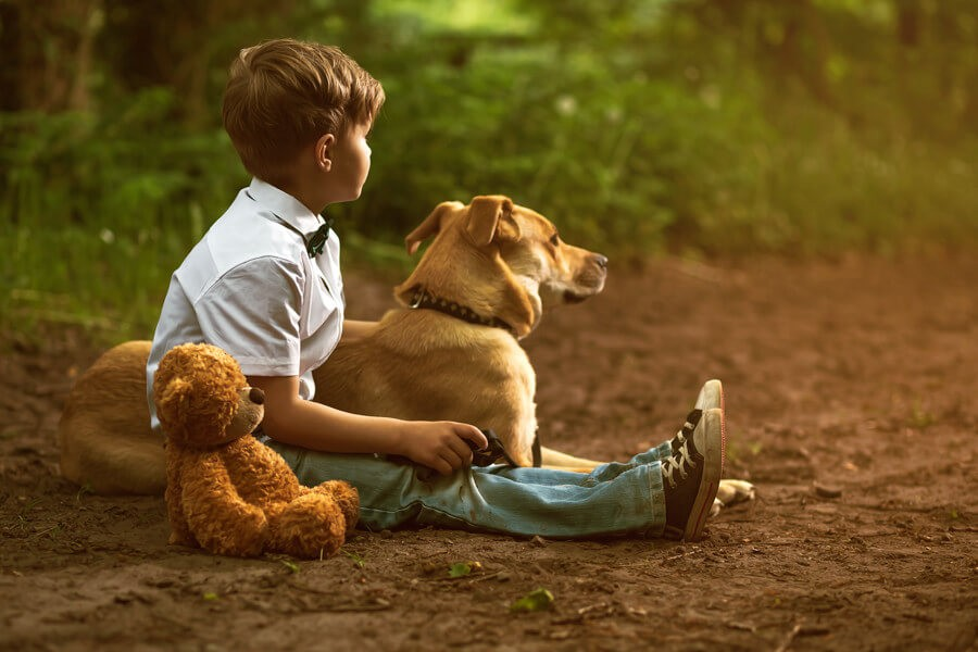 ребенок сидит с собакой