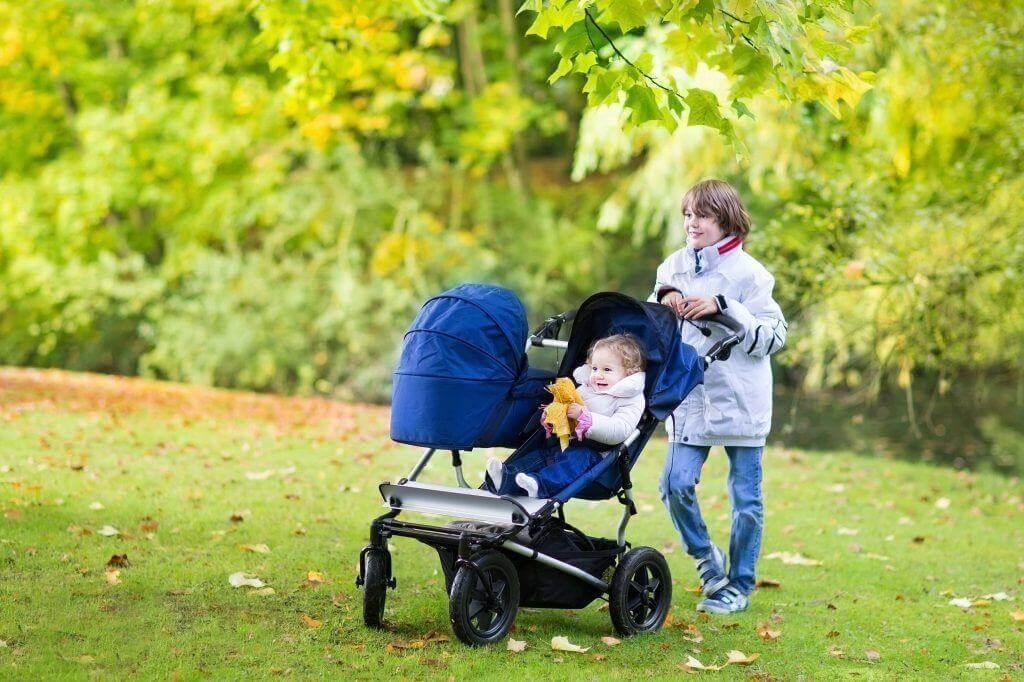 Как выглядит коляска для детей-погодок