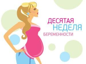 10 недель беременности