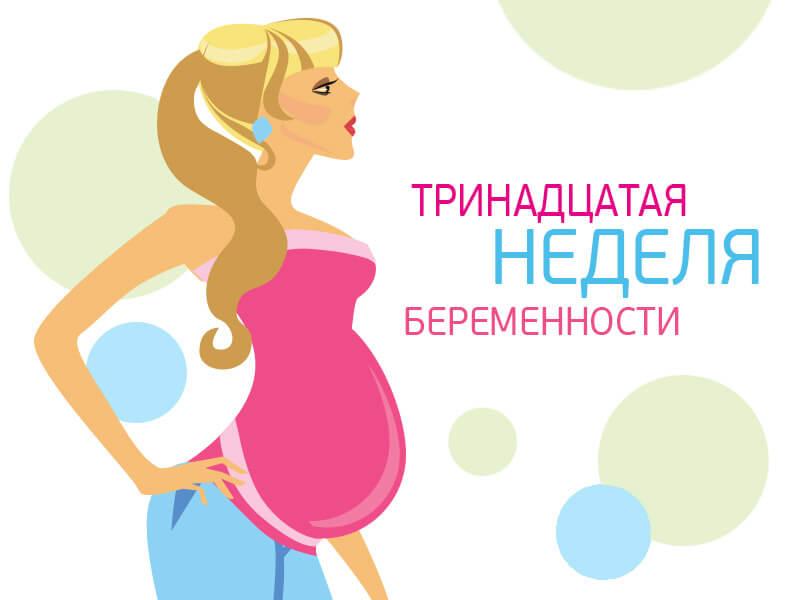 13 неделя беременности: что происходит