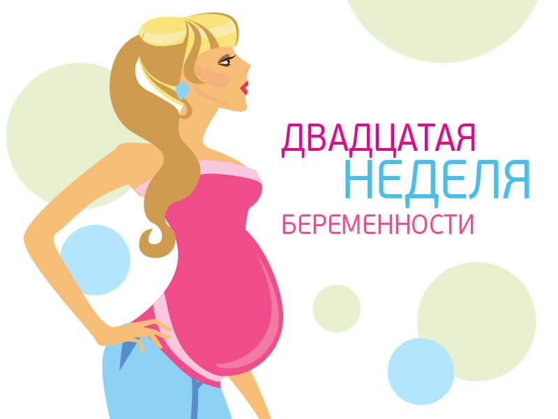 20 недель беременности