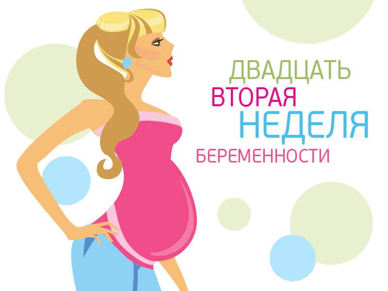 22 неделя беременности