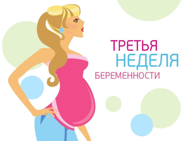 3 неделя беременности
