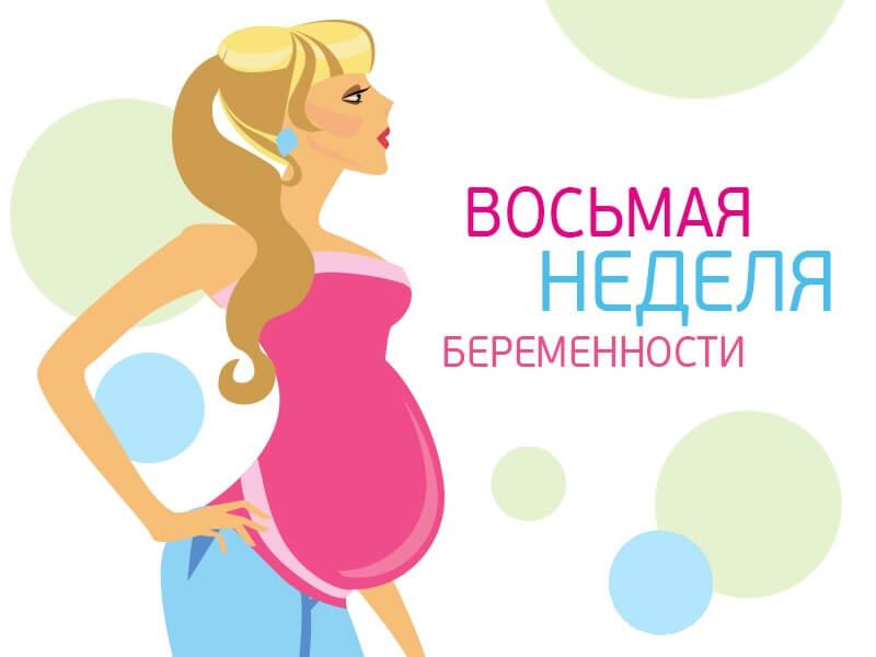 8 недель беременности: что происходит