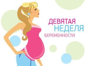 9 недель беременности